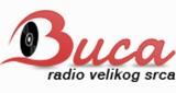 Radio Buca Novi Sad Uzivo