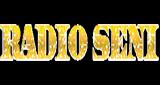 Radio Seni Velika Plana Uzivo