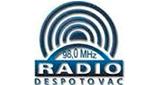 Radio Puls Despotovac Uzivo