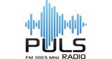Puls Radio Negotino Online