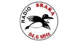 Radio Sraka Novo Mesto Online