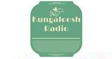 kungaloosh radio
