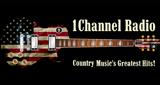 1 Channel Radio