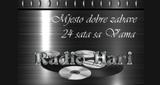 Radio Hari