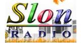 Radio Slon Tuzla Uzivo