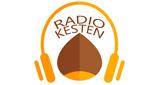 Kesten Radio Prnjavor Online
