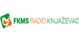 Fkms Radio Knjazevac Online