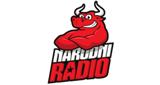 narodni radio sarajevo online